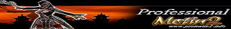 Professional Metin2 Banner