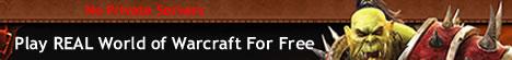 Free World of Warcraft Banner