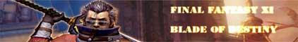 Blade of Destiny - Final Fantasy 11 Banner