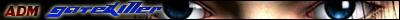 WYD Star Destiny Banner