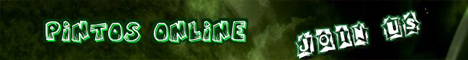 Pintos Online Banner